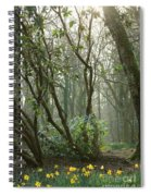 Mythical Place Spiral Notebook