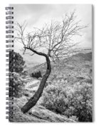Naked Spiral Notebook