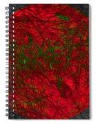 Nameless1 Spiral Notebook