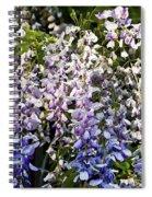 Nancys Wisteria 3 Db Spiral Notebook