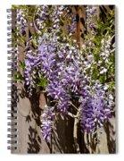 Nancys Wisteria Db Spiral Notebook