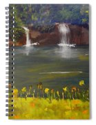 Nandroy Falls In Queensland Spiral Notebook