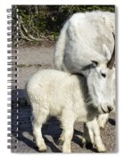 Nanny And Baby Spiral Notebook