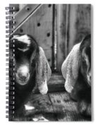 Nap Time For The Kids Spiral Notebook