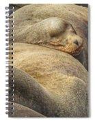 Nap Time 0009 Spiral Notebook