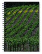 Napa Valley Vineyard Spiral Notebook