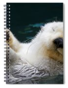 Napping On The Water Spiral Notebook