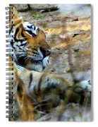 Naptime For A Bengal Tiger Spiral Notebook