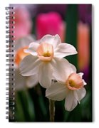 Narcissus And Tulips Spiral Notebook