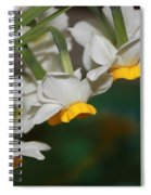 Narcissus Profile Spiral Notebook