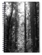 Narrow Path Spiral Notebook