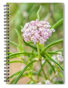 Narrowleaf Milkweed Spiral Notebook