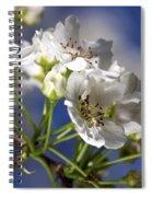 Nashi Pear Spiral Notebook