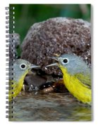 Nashville Warblers Vermivora Ruficapilla Spiral Notebook