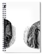 Native Americans: Sign Language Spiral Notebook