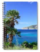 Native Fan Palms In Sant Elm Spiral Notebook