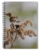 Natural Abstract 48 Spiral Notebook