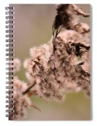 Natural Abstract 49 Spiral Notebook