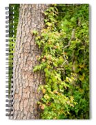 Natural Attachment Spiral Notebook
