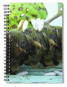 Natural Causes Spiral Notebook