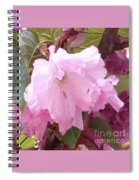 Natural Floral Beauty Spiral Notebook