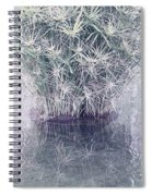Natural Reflections Spiral Notebook