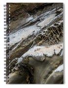 Natural Rock Art Spiral Notebook