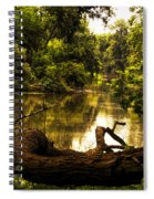 Natural Seating Spiral Notebook