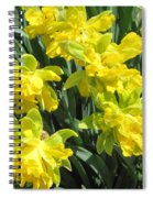 Naturalized Daffodils On The Farm Spiral Notebook