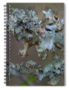 Naturally Abstract Spiral Notebook