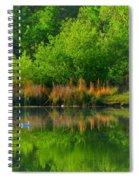 Naturally Reflected Spiral Notebook