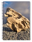 Naturally Sculpted Waterworn Wood On Pebble Beach Spiral Notebook