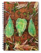 Nature Abstract 16 Spiral Notebook