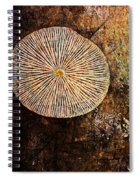 Nature Abstract 22 Spiral Notebook