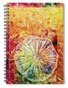 Nature Abstract 44 Spiral Notebook