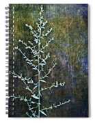 Nature Abstract 46 Spiral Notebook