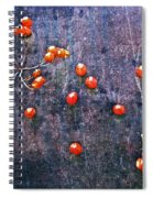 Nature Abstract 49 Spiral Notebook