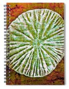 Nature Abstract 5 Spiral Notebook
