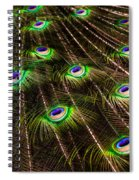 Nature Abstracts Spiral Notebook