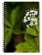 Nature Celebrates Spring With A Burst Of Botanical Fireworks Spiral Notebook