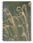 Nature Curls 2013 Spiral Notebook