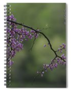 Nature Does Not Hurry Blossoms In Purple Spiral Notebook