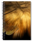 Nature Does Not Hurry Follow The Light Spiral Notebook
