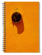 Nature Don't Stop Limited Edition 1 Of 1 Spiral Notebook