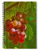 Nature Goodness Grapes On The Vine Spiral Notebook
