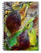 Nature Has Been Recycling For Ages  Spiral Notebook