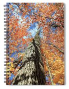 Nature In Art Spiral Notebook