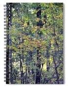 Nature In Autumn 2012 Spiral Notebook