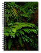 Nature In The Pacific Nw Spiral Notebook