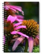 Nature Made Echinacea Spiral Notebook